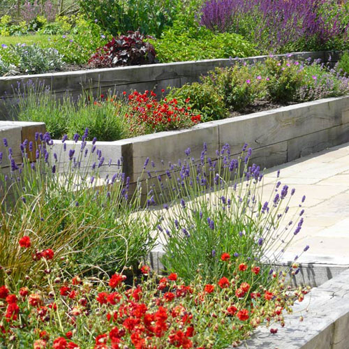 Contemporary country garden design project in for Garden step designs uk
